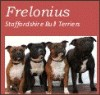 Frelonius Staffordshire Bull Terriers