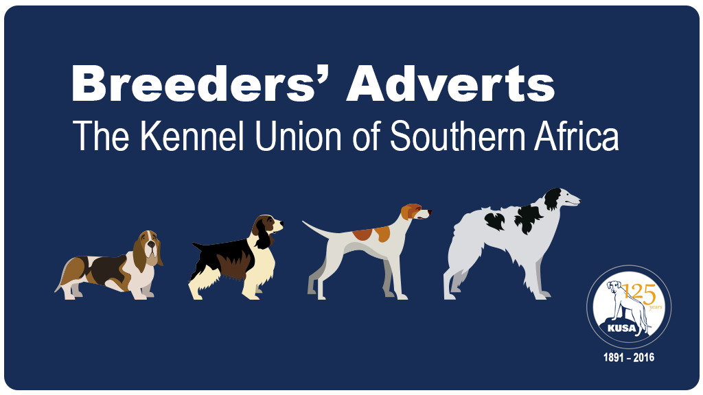 breeders classifieds banner new
