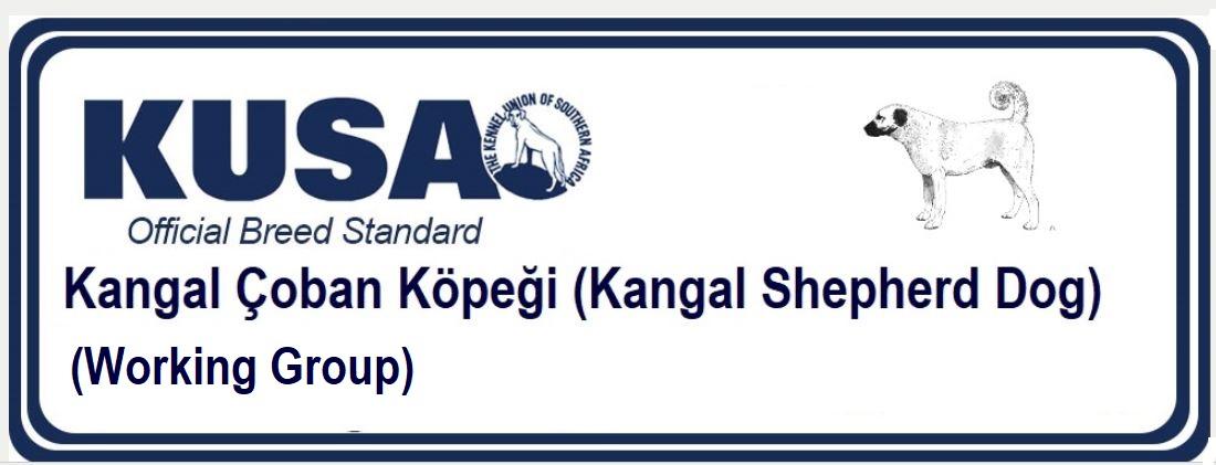 Kangal Çoban Köpeği (Kangal Shepherd Dog)