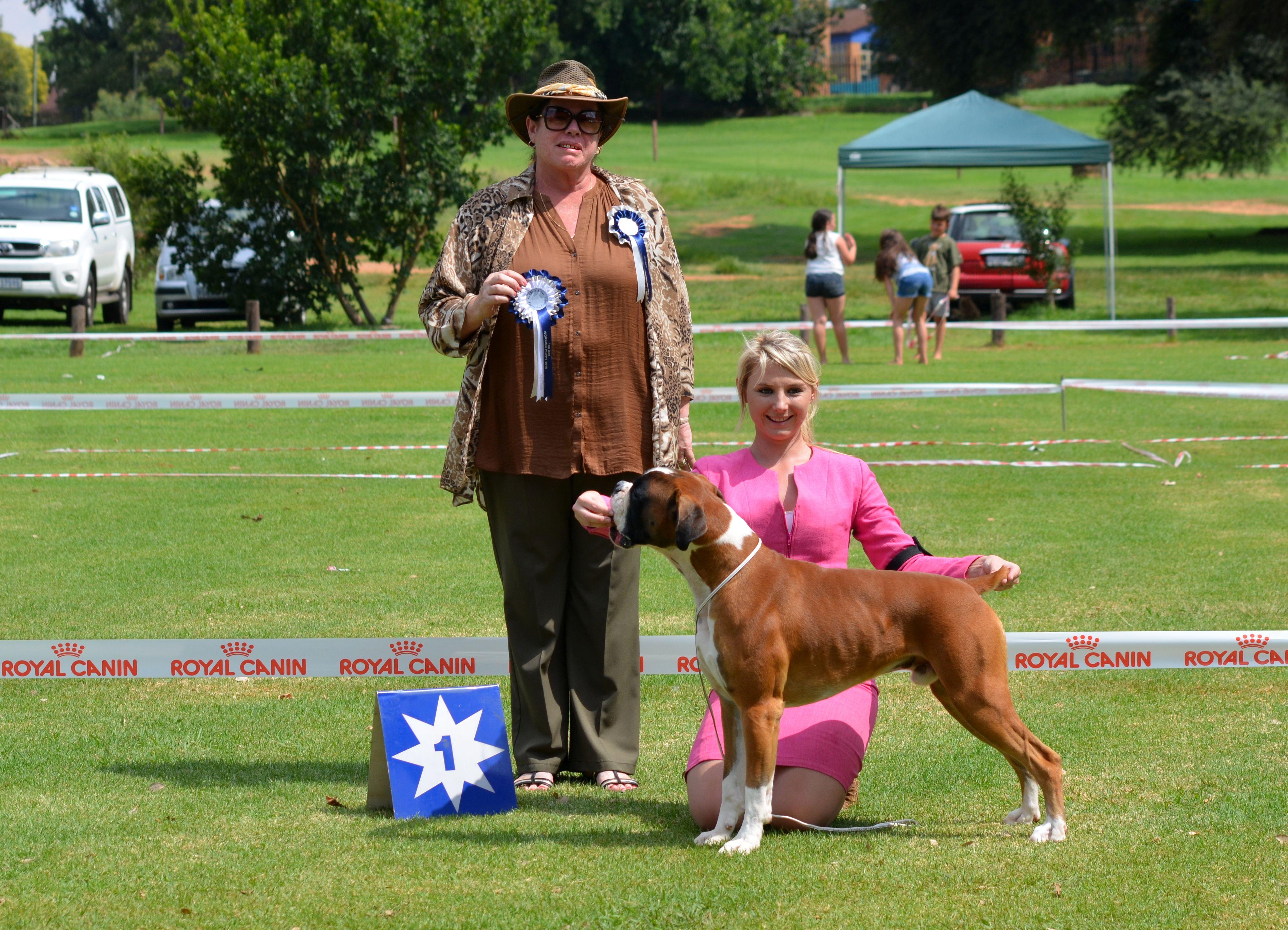 Kusa Dog Shows