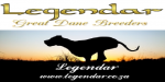 LEGENDAR (Great Dane)