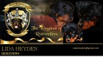 VOM HEYDEHEIM (Rottweiler)